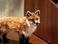 These amazingly lifelike animals are crafted entirely from ...