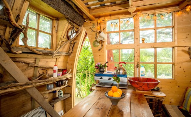 See Why The Tree Sparrow House Is Airbnb S Most Desired Uk