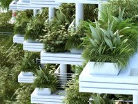 Balcony Garden Plants India - Garden Ftempo