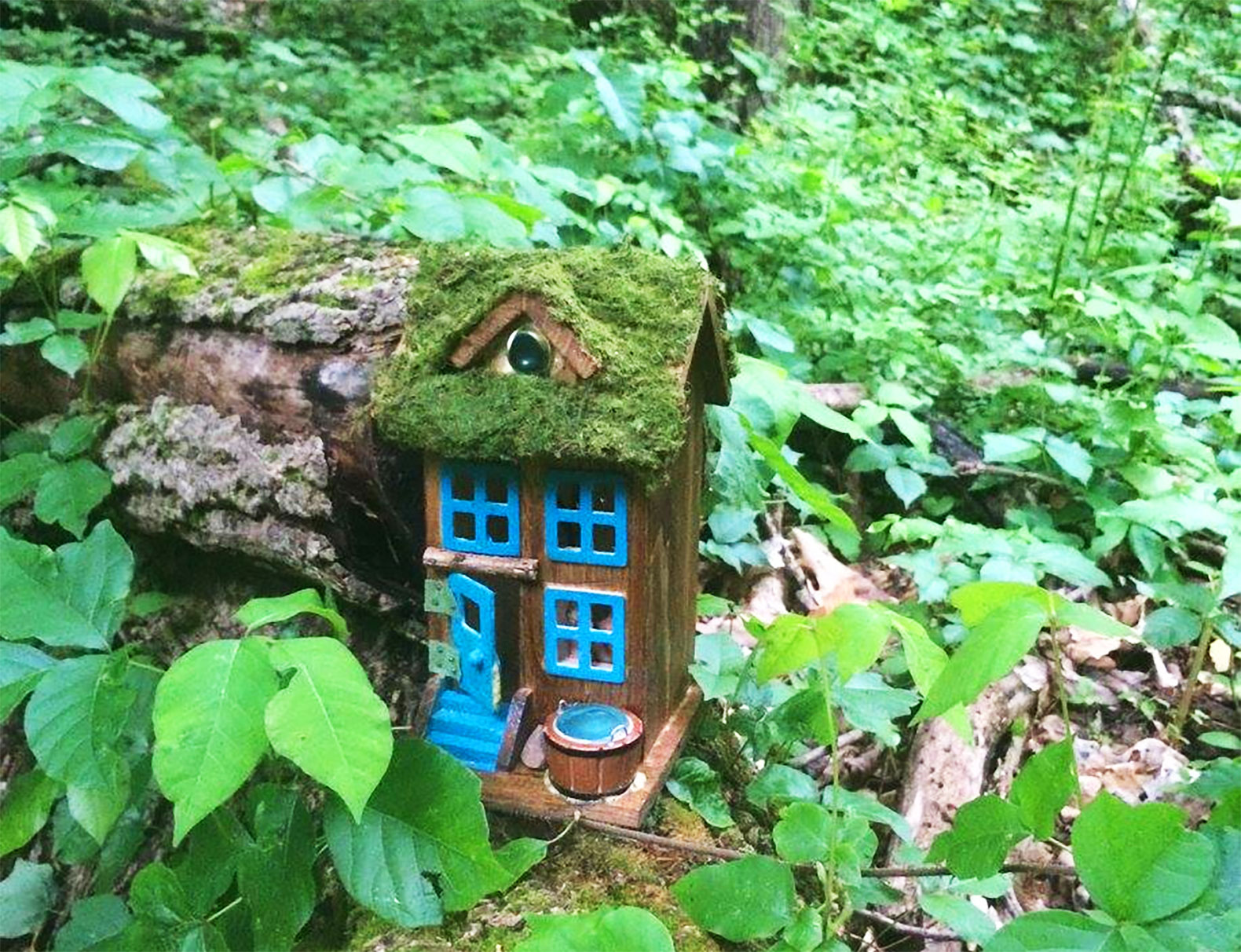 New Jersey Hiking Trail Lined With Mysterious Itsy Bitsy Fairy Houses Inhabitat Green Design