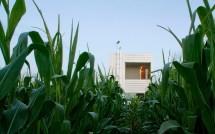 Rustic Prairie House In Wisconsin Reaches Stars