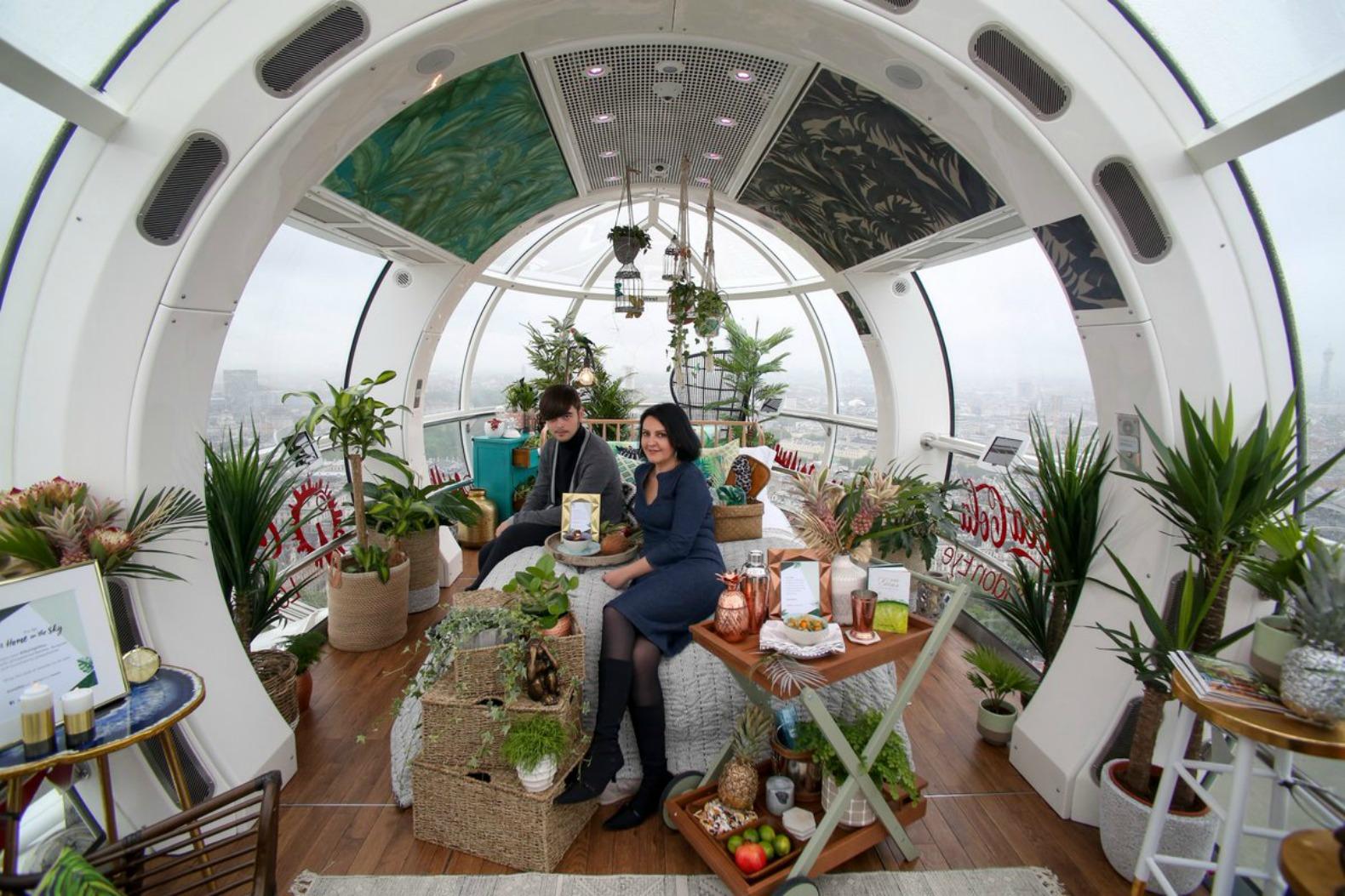 London Eye capsule transformed into rainforestinspired