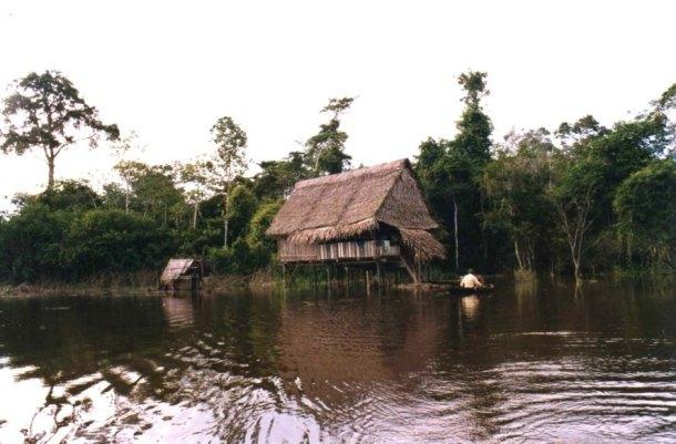 Amazon River, Amazon Rainforest, Amazon home, Amazon house