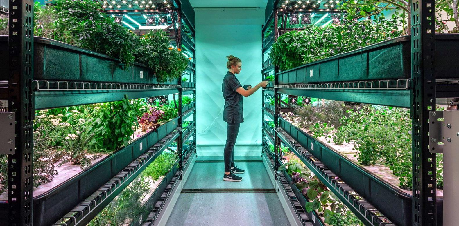 Farm Fresh Underground San Francisco