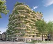 building vertical garden