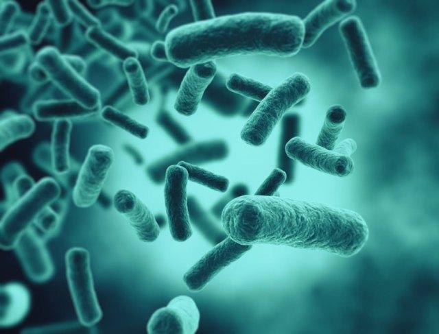 carbapenem-resistant Enterobacteriaceae, CRE bacteria, CDC, ARLN, Antibiotic Resistance Laboratory Network, antibiotic resistance, antibiotic resistant bacteria, bacteria, deadly bacteria, nightmare bacteria