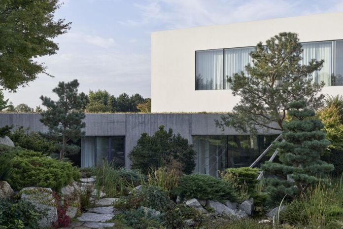 white and gray home surrounded by trees and shrubs