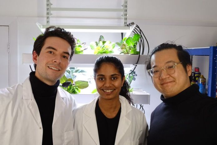 The HECTAR team standing in front of a hydroponic garden.