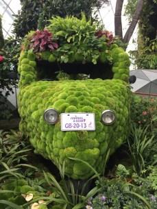 A garden Tuk Tuk