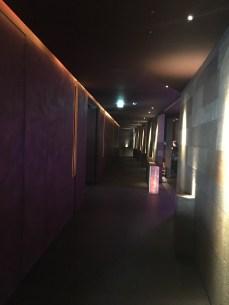 Atmospheric and dark hallway