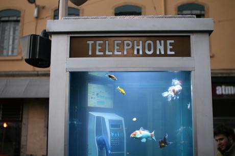 Cabina de teléfono-Acuarium en Lyon de Benedetto Bufalino