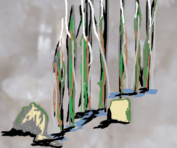Assorted Opinions computer drawing of rocks and trees