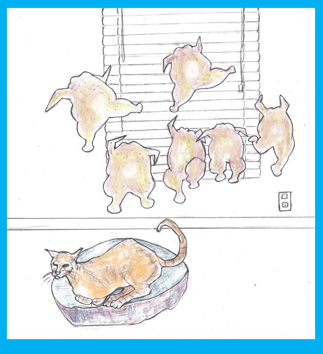 Cartoon of cat dreaming of chickens