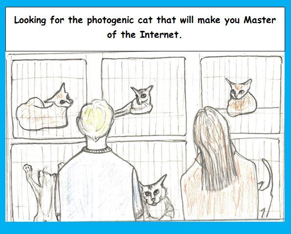 Cartoon of cats who may be internet stars