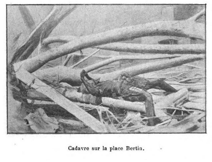 La Catastrophe de la Martinique: forty-two