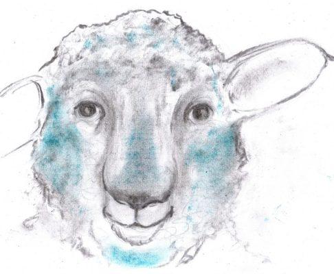 Pastel and charcoal drawing of humanlike sheep
