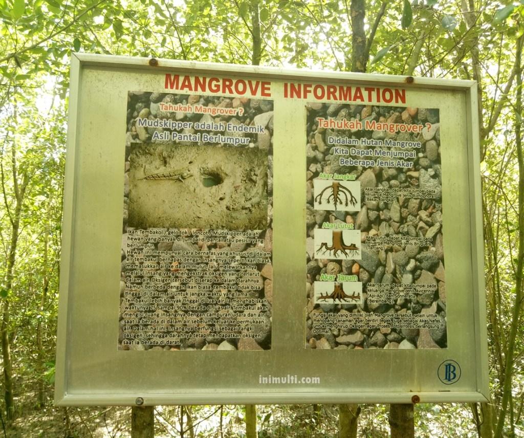 ada replika rumah melayu di Taman Pasning Singkawang