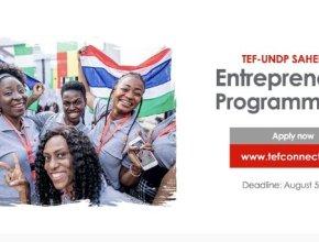 TEF-UNDP Sahel Youth Entrepreneurship Programme