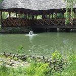 maramures-restaurant-lac