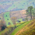 maramures-traditions-nature-preservees