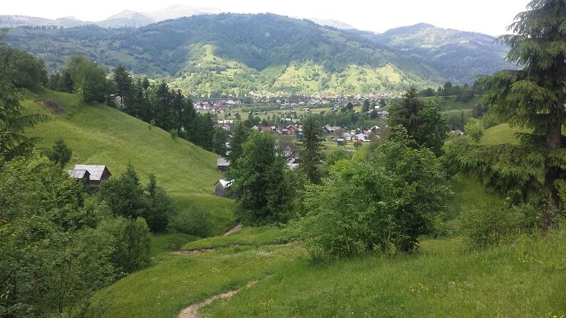 balade-poienile-de-sub-munte-collines