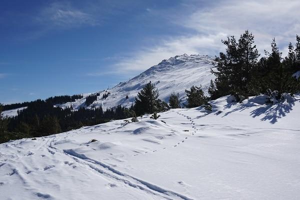 mont-vitosha-hiver