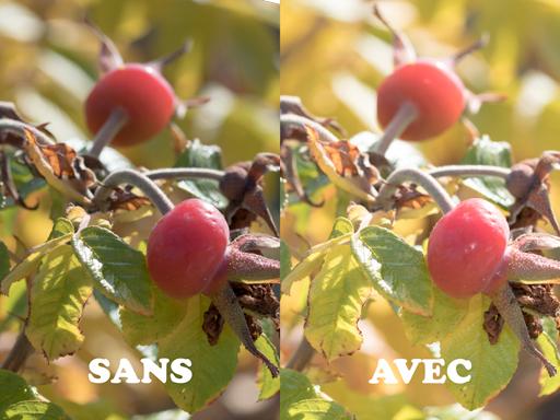 Illustration de l'usage du flash pour réduire les contrastes
