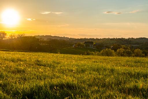 Prairie délicatement caressée par les doux rayons du soleil couchant