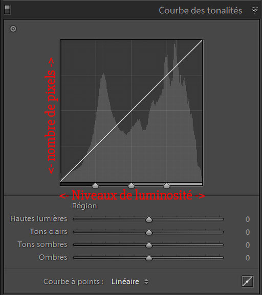 Description des axes de l'histogramme dans Lightroom