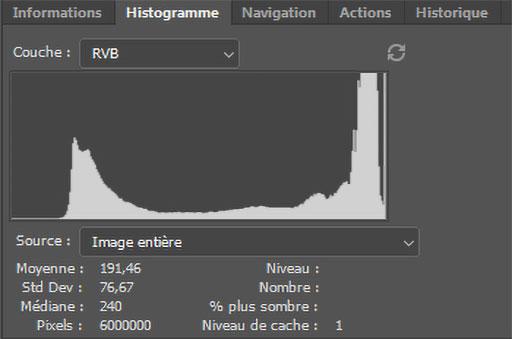 Représentation du panneau histogramme dans Photoshop.