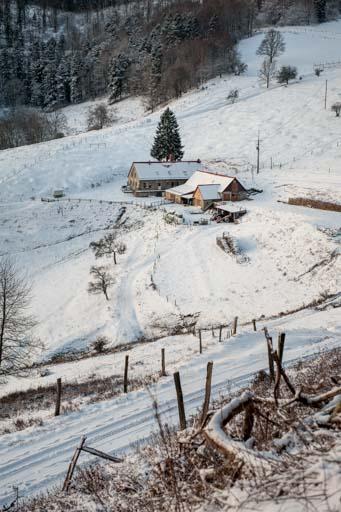 Au cœur du Ballon d'Alsace enneigé