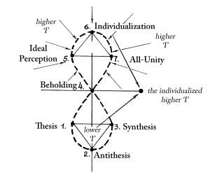 7 membered thinking