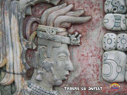 taberecusuflet-0641