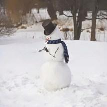 creative-snowman-ideas-46-5853eae865d1e__605