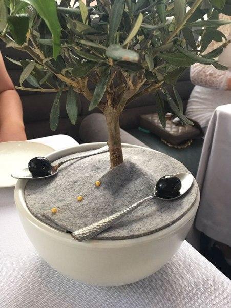 funny-food-serving-restaurant-fails-229-595e4ed81a686__605