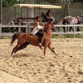 horse-batyi-runing