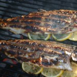 Trout On The Grill, From Stream To Table
