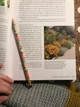 Had a chance to read some more of my Illinois gardening book.