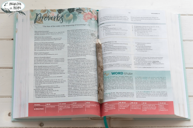 The CSB Study Bible for Women - Inkblots of Hope