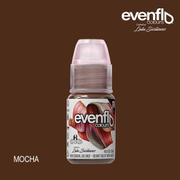 Evenflo Mocha
