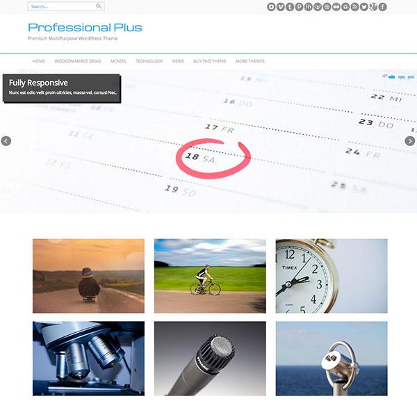 Professional Plus - Business & Professional WordPress Theme