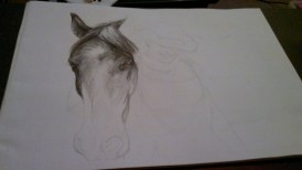 Meagan and Horse 1