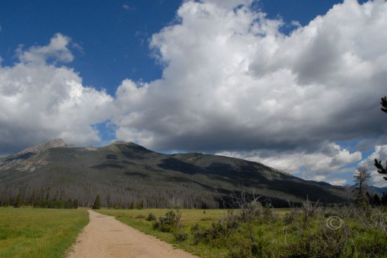 Bowen-Baker Trail