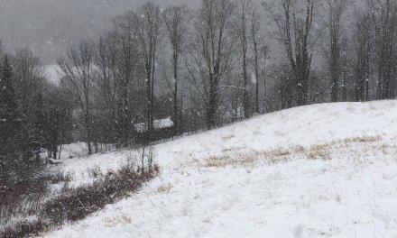InkjetMall Winter Solstice Newsletter
