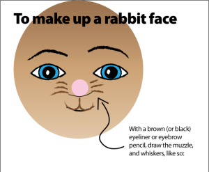 rabbit makeup diagram 4