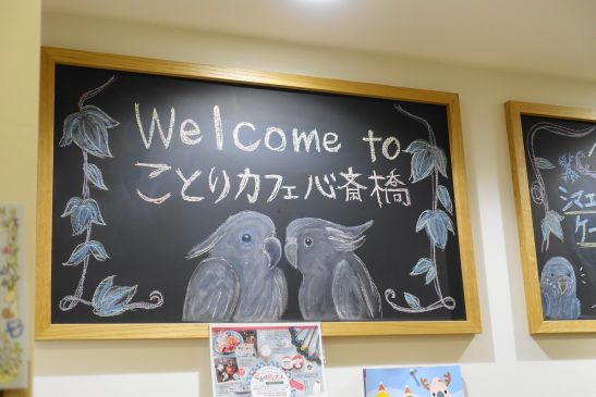 Welcome to ことりカフェ心斎橋