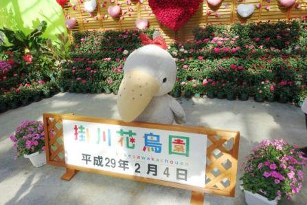掛川花鳥園のハシビロコウ人形