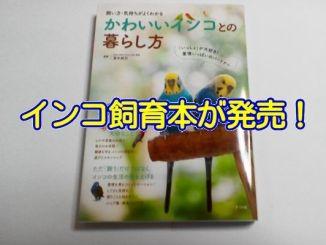 インコ飼育本「かわいいインコとの暮らし方」が2017年5月8日に発売