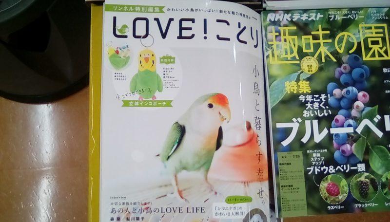 鳥雑誌「LOVE!ことり」が2017年6月26日出版