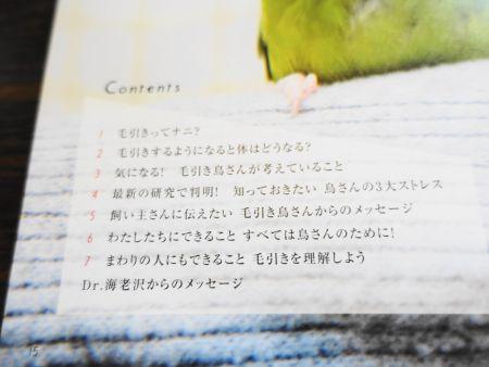 小鳥のキモチの毛引き症特集の目次